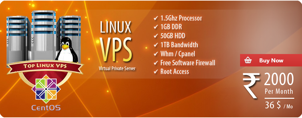 cheap linux VPS server